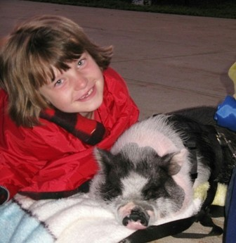 girl and pot bellied pig